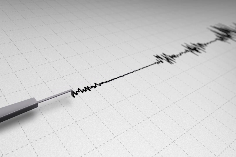 Delhi lies in seismic zone 4 where there are major fault lines which cause earthquakes often.