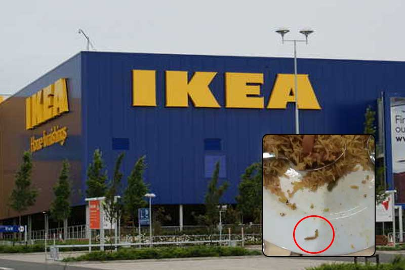 Ikea India customer creeped out by caterpillar in food