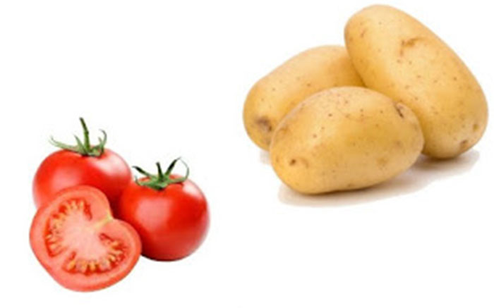 Tomato and Potato Pack