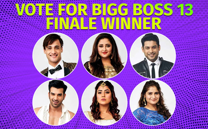 How to Vote BB 13 Contestant Finale